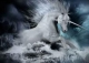 unicorn's Avatar